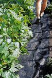 農業のための黒い雑草防除Agrotextile