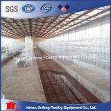 Automatisches Huhn-Rahmen-System ein Typ für Geflügelfarmen