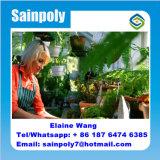 Парник зеленых домов сада для земледелия