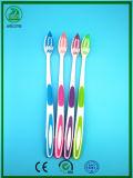 Zwei Farben-Griff aber sehr flexible und schöne erwachsene Zahnbürste