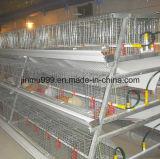 農場の使用のための安い自動家禽装置の肉焼き器のChcikenのケージフレーム