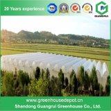 Дома тоннеля Multi-Пяди пластичные зеленые для засаживать