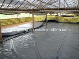 Tela preta do controle dos PP Weed para materiais agriculturais