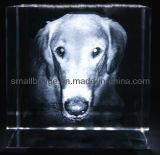 El laser del cristal 3D grabó al agua fuerte el perro