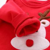 Poliéster redondo do algodão 20% da garganta 80% crianças bordadas 280 G/M Hoodies da correção de programa