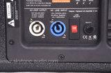 Linha caixa audio do ímã do Neodymium de 12 polegadas do altofalante da tecnologia da parte superior do sistema de som da disposição