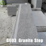 灰色のGranite PolishedおよびWall CladdingおよびFloorのためのFlamed Tile
