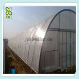 Hoher Tunnel-Plastikdeckel-Gemüseproduktions-grüne Häuser