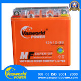 Eine Quanlity Batterie vom Vasworld Energien-Gel-Typen Motorrad-Batterie 12V12ah übersteigen