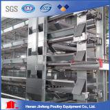 H tapent la cage de poulet de couche de machines d'agriculture sur la vente
