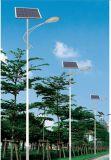Indicatore luminoso di via solare del LED 30W 40W