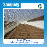 販売のための最も安い太陽温室