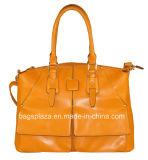 普及したショッピングハンドバッグ、実用的な女性袋、トートバックの新製品(CC41-109 110)