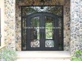 Portas de entrada superiores quadradas do dobro do ferro feito com luzes laterais