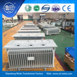 S13 10kv de Transformator van de Distributie voor de Levering van de Macht van de Fabrikant van China