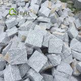 Pietra per lastricati del buon di prezzi G603 cubo grigio-chiaro del granito 10X10X10