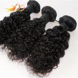 Tessitura indiana dei capelli del Virgin dell'arricciatura del Jerry dei capelli di Remy del commercio all'ingrosso 100%