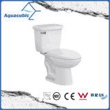 Toilette en deux pièces en céramique de salle de bains de l'Amérique du Sud
