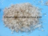 Cinzento lavado / pato cinza para baixo 95% (EN12934, EUA-2000, JIS, GB / T17685-2016)