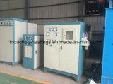 Het Verwarmen van de Inductie van de Smeltende Oven van het Aluminium van het Bedrag van Kgps Grotere Machine