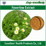 Estratto caldo del fiore di Feverfew del prodotto naturale di vendita
