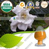 100% صارّة طبيعيّة معدلة مقتطف زهرة غردينيا صفراء صبغ
