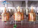 1000L comerciano la strumentazione all'ingrosso di preparazione della birra con il serbatoio di combustibile diesel, prezzi del serbatoio di flocculazione dal fornitore cinese