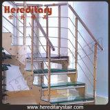 Het dubbele Vloeistaal plateert de Houten Treden van het Glas (sj-3026)