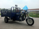 мотоцикл трицикла груза 150cc/3 колес с обвайзером ноги (Tr-12)