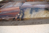 Brames en bois fossiles normales brames Polished d'une pente