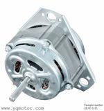 Wechselstrom-elektrischer Wäsche-Maschinen-Motor für den Iran