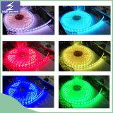 Luz de tira impermeable del LED con la UL de RoHS del Ce