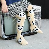 Hete Verkopende Katoenen van het Jonge geitje van de Ontwerpen van de Panda Legging /Pantyhose