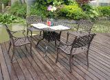 セットの家具を食事する普及した庭