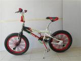 "Bicicleta BMX de 20 ""mini estilo livre (AOK-BMX003)"