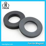 Изготовленный на заказ магнит феррита кольца диктора редкой земли размера постоянный
