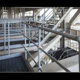최신 담궈진 직류 전기를 통한 Railing&Stanchion