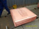 Cuivre cuivre pur/pur de 99.99 de cathode/prix de cuivre de cathodes à vendre Tbu6