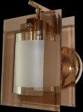 Alta calidad clásica del hierro y la lámpara de pared de cristal / pared Iluminación (9110 / 1W)