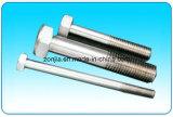 Boulon de l'acier inoxydable AISI 304/316
