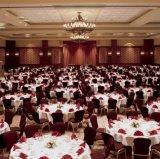 O cabo flexível elegante do hotel para trás Banquet o jantar da cadeira