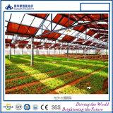 De grootste ZonneFabriek van de Module BIPV in China