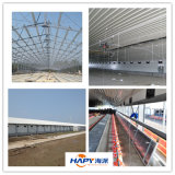 Light Steel Structure Poultry Chicken House Building 현대와 Beautiful