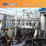 Bière de bouteille en verre rinçant Hy-Remplir de capsulage remplissant de machine