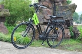 36V 250W Dame Road Electric Bicycle mit zentralem Motor