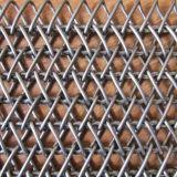 Cinghia della maglia dell'alimento per il dispositivo trasportatore, macchinario caldo di trattamento