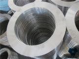 Deslizamento forjado (So) na flange do aço de carbono do RF