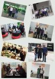 Het MonoZonnepaneel van het Huis van de Prijs van de fabriek 270W van Chinese Fabrikant