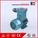 AC de Explosiebestendige Motor In drie stadia van Elektrische Motoren