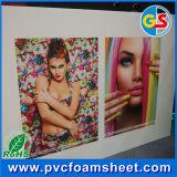 Hoja plástica del PVC para la impresión y hacer publicidad